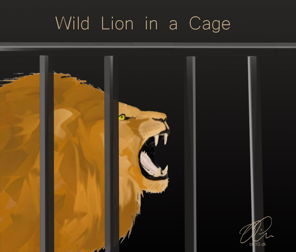 Wild lion in cage