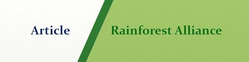 Article Rainforst Rainforest alliance