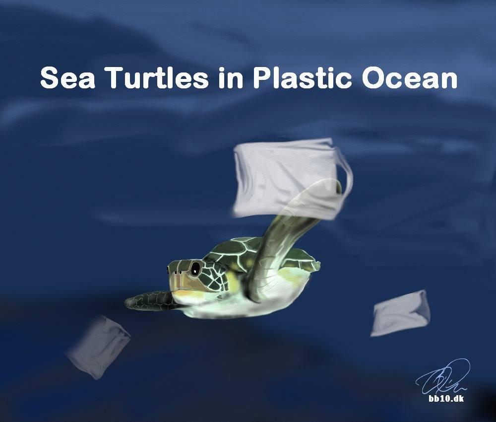 Sea Turtle Plastic ocean