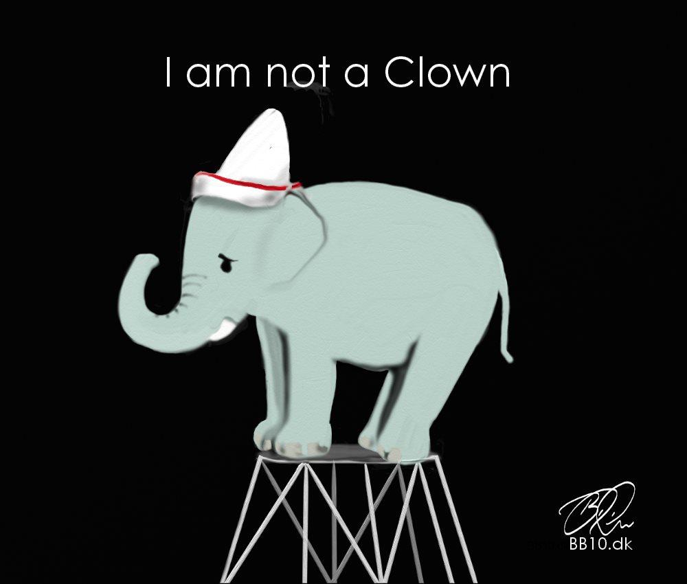 Elefant in Circus