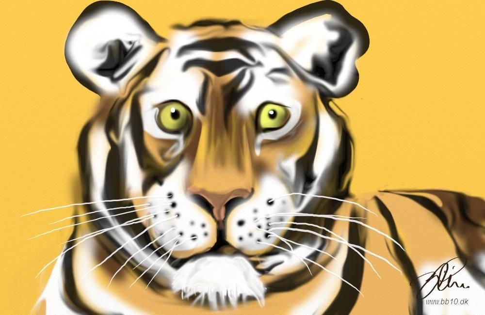 Tiger CBS News
