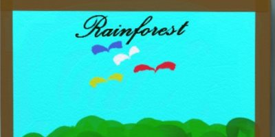 Article Rainforest animals