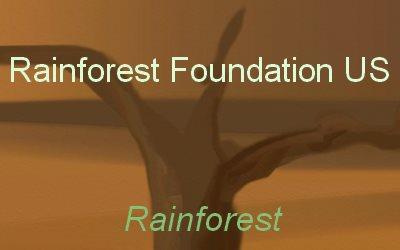 Foundation US