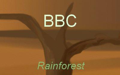 Article Rainforest end BBC