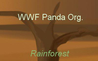 WWF Panda org.