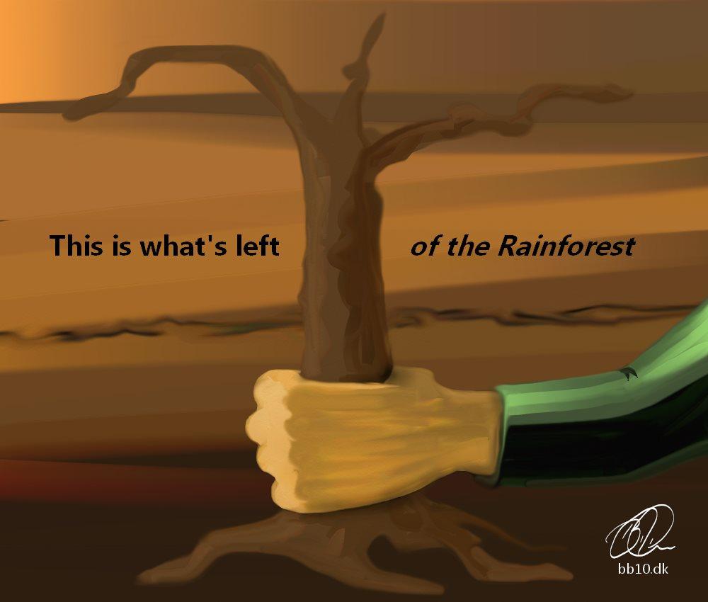 Rainforest end WWF Panda Org.