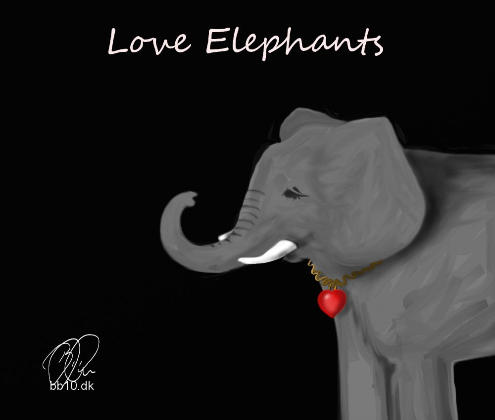 Love Elephants Elephants for Africa