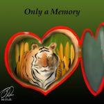 Love Tigers