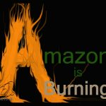 Amazon Burning