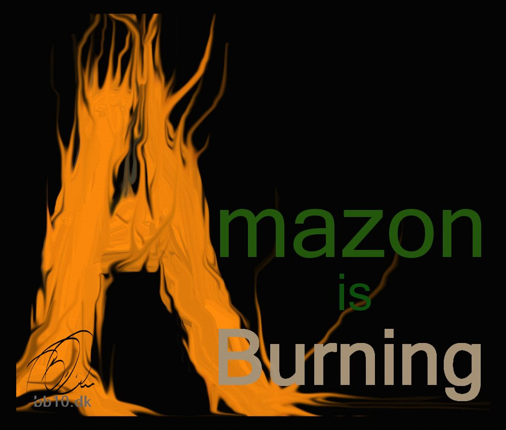 Amazon Burning The Atlantic