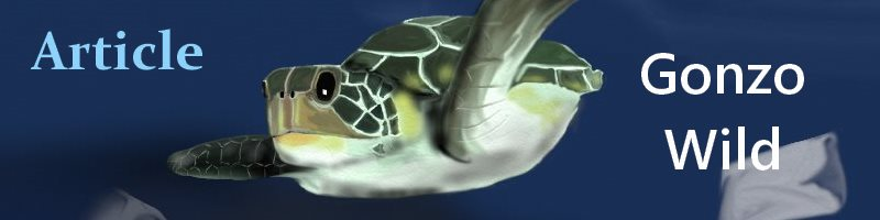 Sea Turtles Gonzo Wild