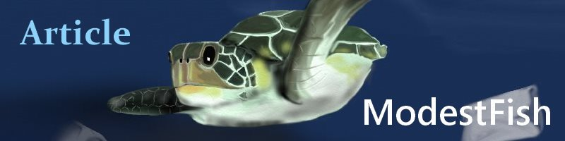 Sea turtles modestFish Ocean Facts