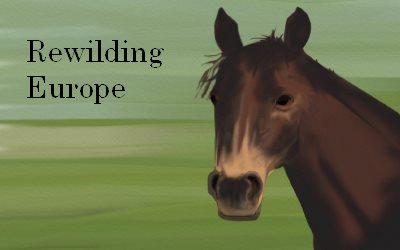 Horse Rewilding Europe