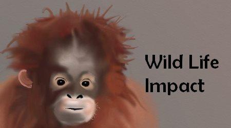 Wild Life Impact
