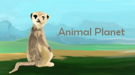 Suricate Animal Planet YouTube