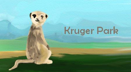 Suricate Kruger Park