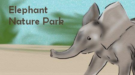 Elephant on the Run Elephant Nature Park