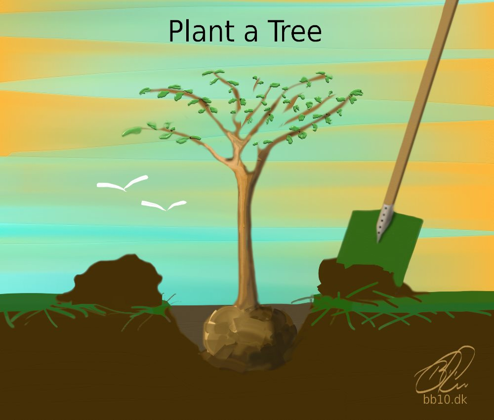 Plant a Tree WeForest