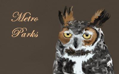 Metro Parks Owl