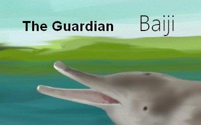 Dolphin Baiji The Guardian