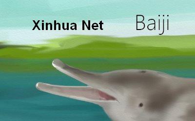 Dolphin Baiji Xinhua Net