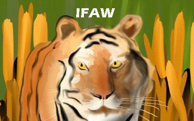 Tigers IFAW
