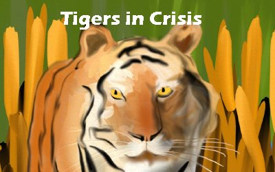 Article Tigers in Crisis