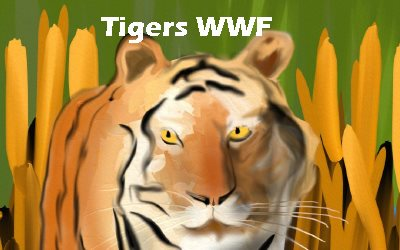 Tigers World wild Life
