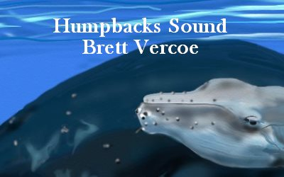 Humpbacks Sounds Brett Vercos