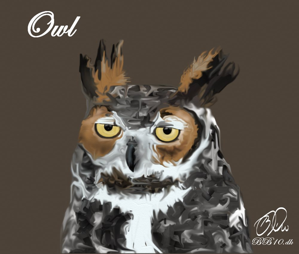 Owl World Animal Foundtion