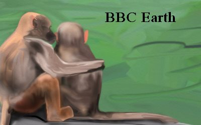 Article Monteys BBC Earth