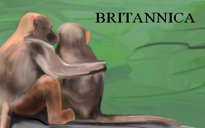 Article Monkyes BRITANNICA
