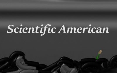 Air Pollution Coal Scientific American