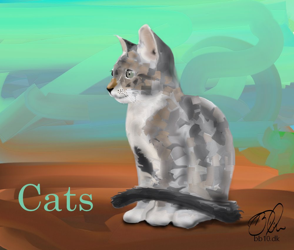 Cats AVMA