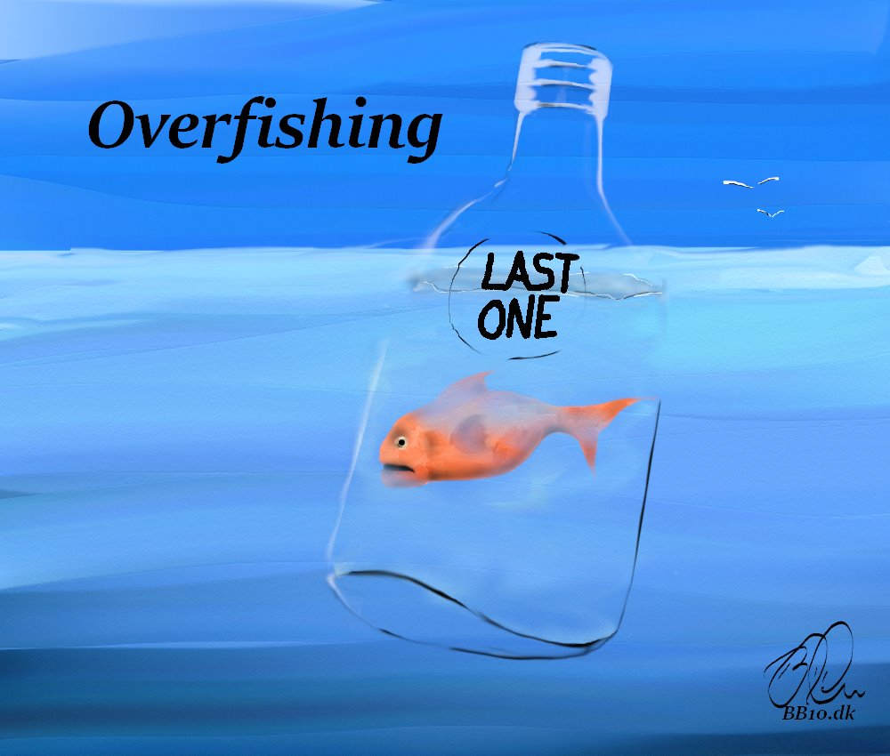 Overfishing Last One Ethical Corp