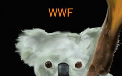 Koala Bear WWF