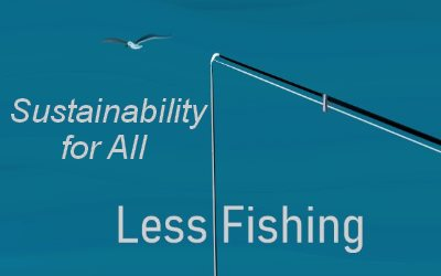 Sustainability for All