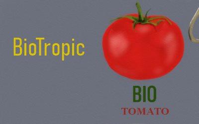 Article Bio Tomato BioTropic