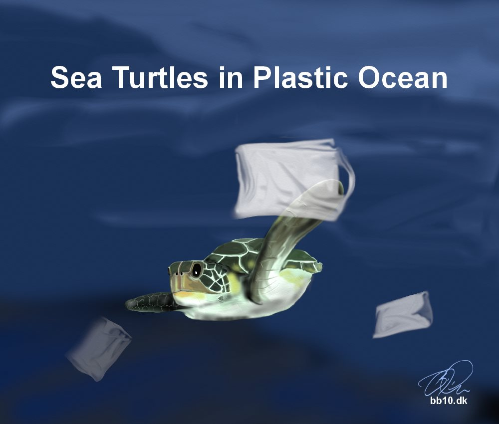 Sea Turtles Conserve Turtles
