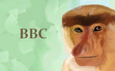 BBC Proboscis monkey