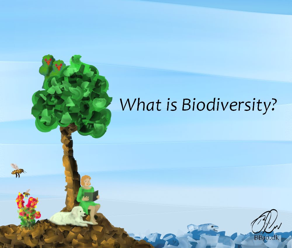 What is Biodiversity WWF International