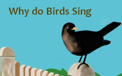 Why do Birds Sing