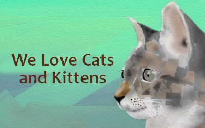 We Love Cats and Kittens