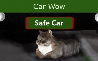Car Wow