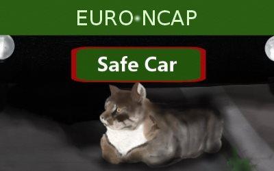 EURU NCAP