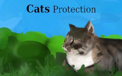 Cats Protection in Winter