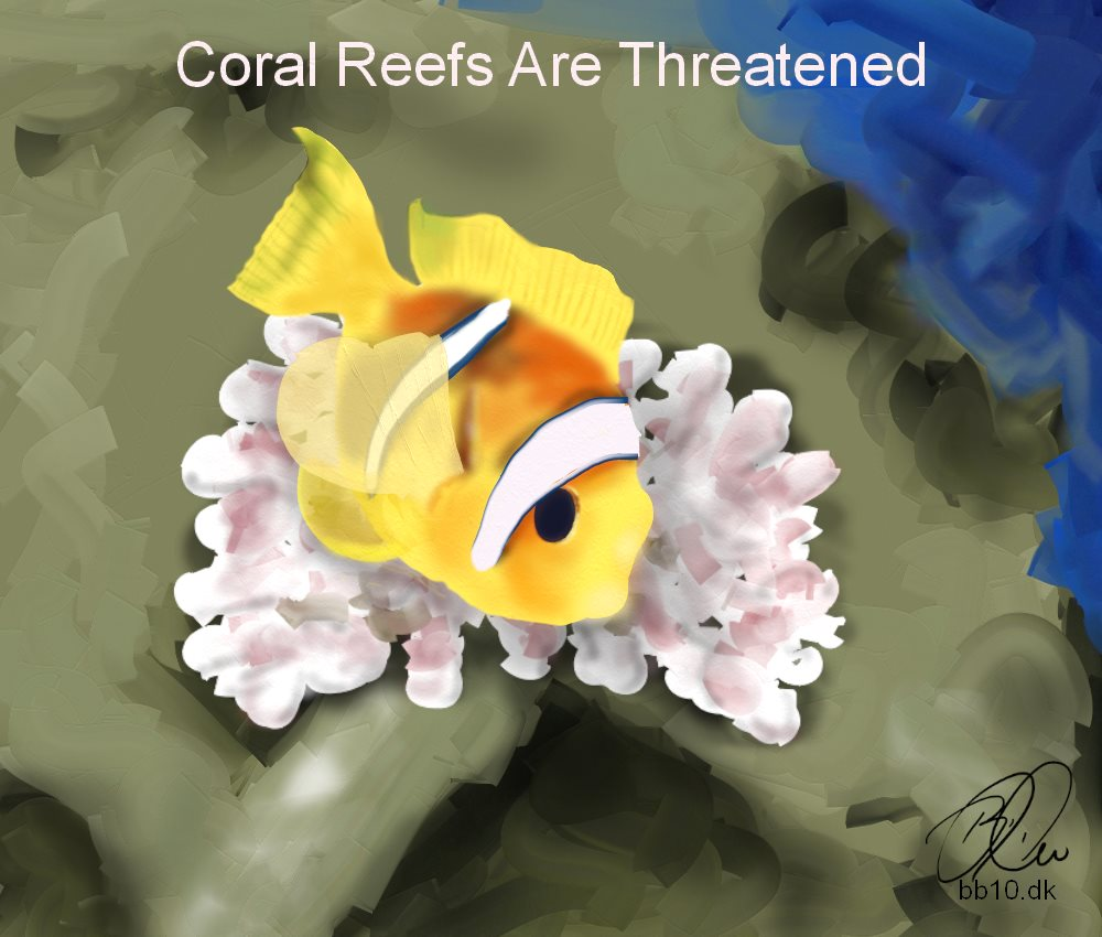 National Geographic Coral Reefs
