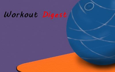 The Workout Digest Guide