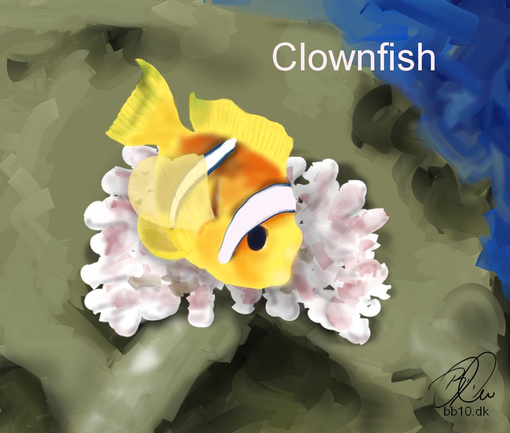 Clownfish or Anemonefish environmental changes