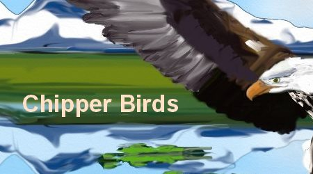 Chipper Birds Best Monocular for Birds